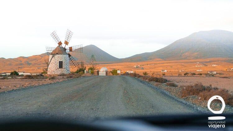 que ver en Fuerteventura molino