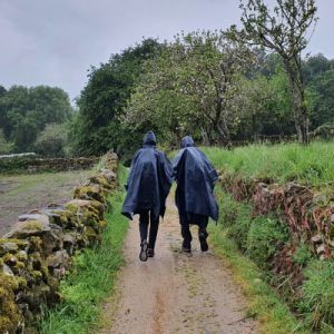 Taller gratuito Camino